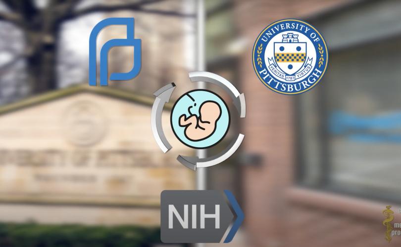 Abortált csecsemő testrészeken végzett egyetemi kísérletek, a finanszírozás Faucihoz köthető.